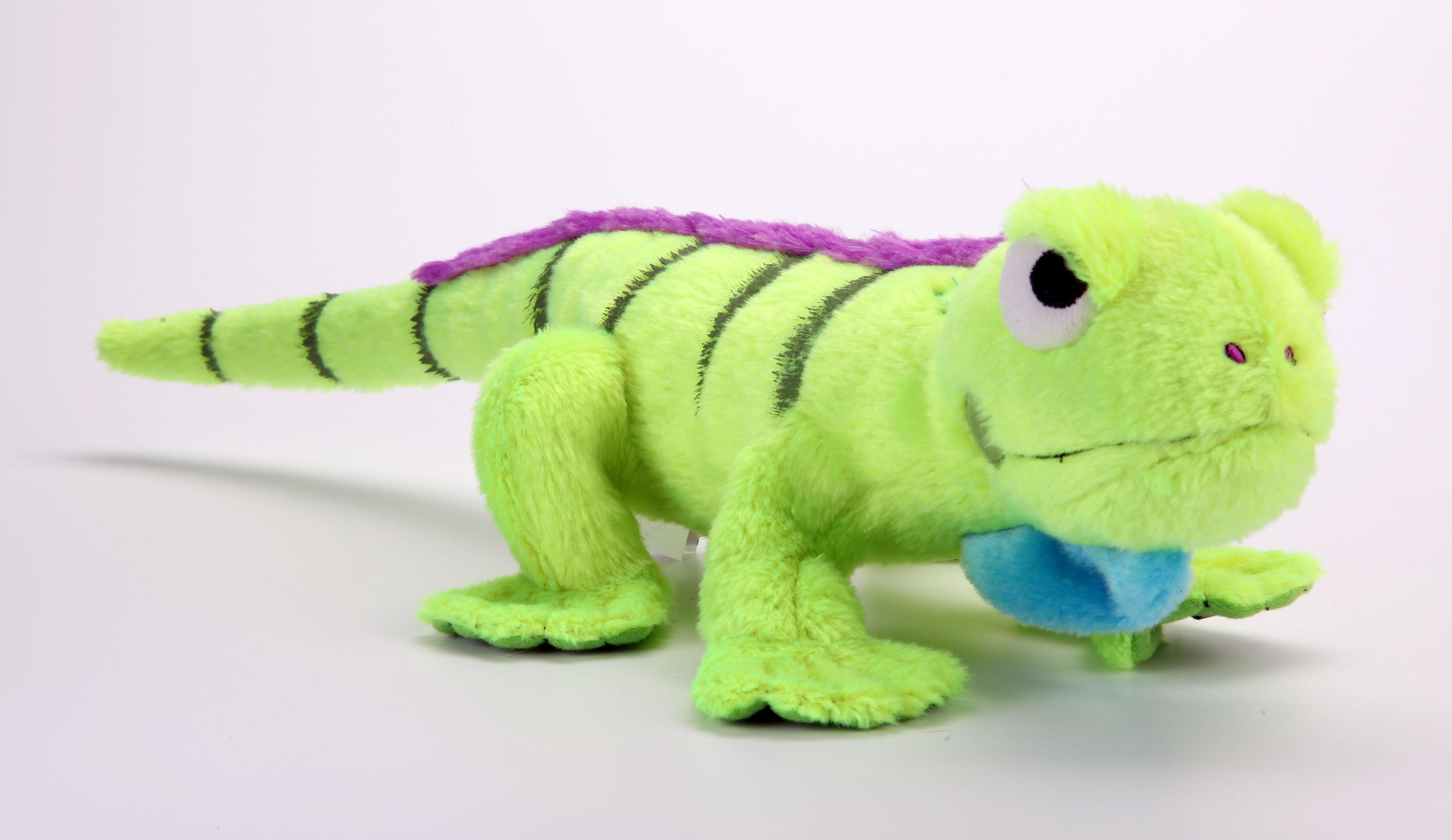 Amphibianz Iguana